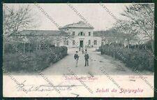 Ancona Senigallia Alterocca 1799 cartolina QQ1213