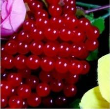 "6mm Red  Round Loose Beads Gemstone 15""hhhhh"