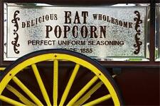 Popcorn Kiosk Cart Vendor Service Business MARKETING PLAN MS Word / Excel NEW!