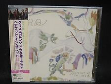 CHRIS ROBINSON BROTHERHOOD Barefoot In The Head + 1 JAPAN CD The Black Crowes