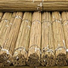Strong Heavy Duty Professional Bamboo Plant Support Garden Canes 2ft-3ft-4ft-5ft