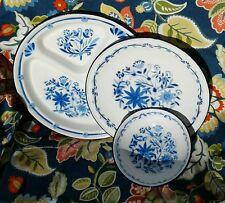 Enamelware Metal Camping Dishes 2 Plates 1 Divided Bowl White Enamel Blue Floral