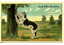 Just A Few Scratches-Kitty Cat at Tree Trunk-1911 Art Greeting Vintage Postcard