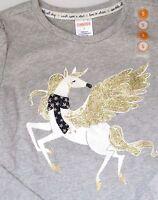Gymboree Girls Shirt Top Flight of Fancy Sz 5 Pegasus Winged Horse Gray Glitter