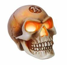 """NIB Skull LED Light Up Glowing Eyes Resin 3.5"""" Figure V42 Alchemy Gothic Vault"""