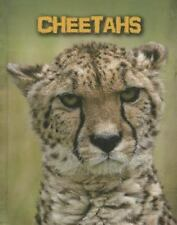 Cheetahs (Living in the Wild: Big Cats)