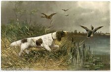 ARTIST SIGNED MÜLLER .CHIEN DE CHASSE. CANARDS. HUNTING DOG. DUCKS