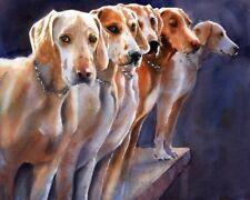 Giclée Penn MaryDel Dog Foxhound Foxhunt Art Painting 40x32 hounds
