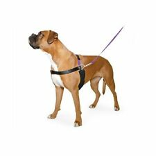 X Large Dog Lead Harness Training Set Heel Free DVD Stops Pulling Jumping Strong