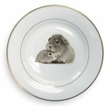 Two Silver Guinea Pigs Gold Rim Plate in Gift Box Christmas Present, GIN-3PL