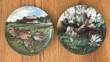 """""""The Quail� Bybwayne Anderson & """"The Rabbit� By Kevin Daniel 8.5� Plates"""