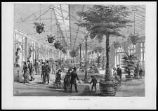 1883 antica stampa-Londra Rettilario (77)