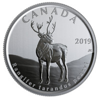 🇨🇦 50 cents Canadian coin, Wildlife Treasury & Fauna 🦌 Peary Caribou UNC 2019