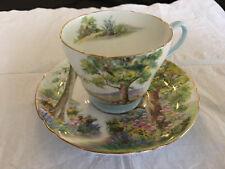 "Shelley ""WOODLAND"" bone china cup &"