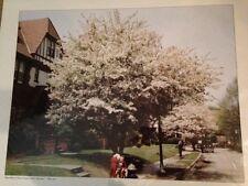 BEECHKNOLL ROAD - FOREST HILLS  GARDENS NY 1944 PHOTO 16 X 20