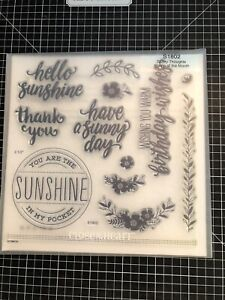 CTMH Close to My Heart Stamps S1802 Sunny Thoughts Stamp of the Month NEW