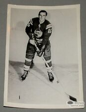 AHL Mid 60's Buffalo Bisons Paul Popiel Hockey Photo
