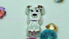 Max Dog Secret Life of Pets icon  Floating Charm 4 Memory Locket US seller fc243