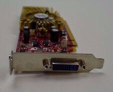Tarjeta Gráfica MSI NX 8400GS 256 MB Dvi Pci-E Perfil Bajo garantía Probado