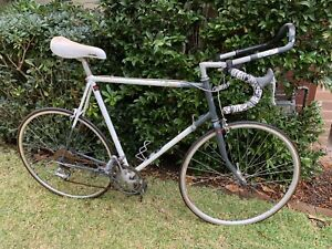 Ricardo Elite 1990s steel frame road bike
