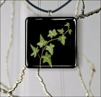 IVY ON BLACK BACKGROUND PENDANT NECKLACE 3 SIZES CHOICE -fdb6Z