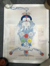 Vintage Mantak Chia Qi Gong Acupuncture TCM Poster Chart - Heavenly Cycle Chakra