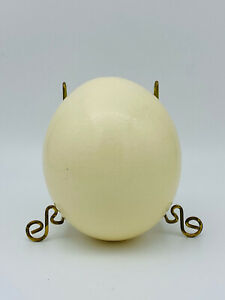 Blown Ostrich Egg Large Empty Clean Craft Display
