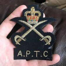 A lovely English made Army Physical Training Corps Blazer Badge