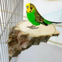 Wood Parrot Bird Cage Perches Platform Stand Rack Pet Budgie Hanging Chew Toy