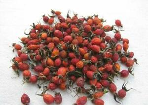 1lb Dried Rosehip Whole Fresh Harvested Natural Russian Berries Шиповник 450g