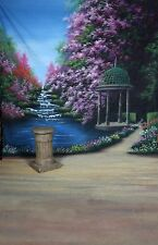 photography background 10' x 20' Hand painted thick Scenic backdrop