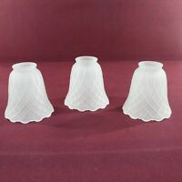 3 Frosted Glass Light Fixture Ceiling Fan Lamp Shades Scalloped