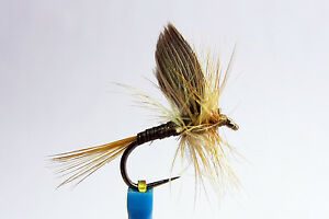 1x Mouche Sèche Quill gingembre H14/16/18 BARBLESS fly fliegen mosca no kill