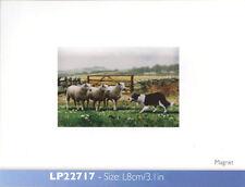 Macneill Collie Dog & Sheep Farmyard Fridge Magnet Leonardo Farm Countryside