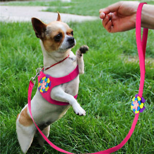 CUTE DOG HARNESS  & LEAD SMALL DOGS SIZES BOW OR FLOWER DESIGNS BLUE BLACK PINK