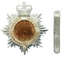 Mixed Service Organisation R.C.T. Anodised (Staybrite) Cap Badge #31