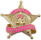 NEW Made it to State Gymnastics Level Pins - Level 3-8