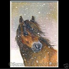 ACEO  LTD EDITION EXMOOR PONY HORSE PRINT FROM ORIGINAL PAINTING SUZANNE LE GOOD