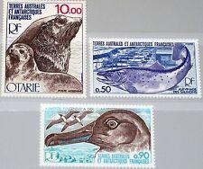 TAAF FSAT 1977 Maury Air 48 117-19 Tiere der Artkis Arctic Fauna Animals MNH