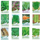 1Bag Heirloom Non-GMO seeds bank survival organic plant Garden vegetable seed EY