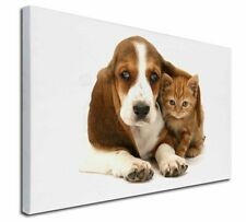More details for basset hound dog and cat x-large 30