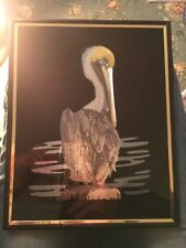 Vintage Reproduction 1980s Kafka Industries Screened Foil Art Etching Pelican