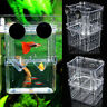 Double Aquarium Fish Tank Guppy Breeding Breeder Rearing Trap Box Hatchery YI2X