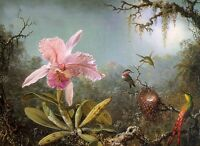 Dream-art Oil painting Cattelya Orchid and Three Brazilian Hummingbirds flowers