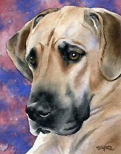 GREAT DANE Dog Watercolor 8 x 10 ART Print Signed by Artist DJR