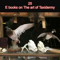 Traditional Taxidermy how to 25 books, animal, bird, fish mounting collection