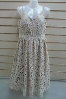 Little- Mistress Dress Cream & Beige Size 12 Lace Detail Party BNWT   G028