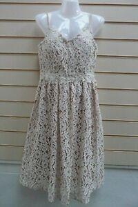 Little- Mistress Lace Dress Size 12   BNWT   G028