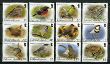 Falkland Islands 2017 MNH Small Birds Definitives 12v Set Wrens Finches Stamps