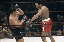 1970 OSCAR BONAVENA : MUHAMMAD ALI in Madison Square Garden fight DVD - english